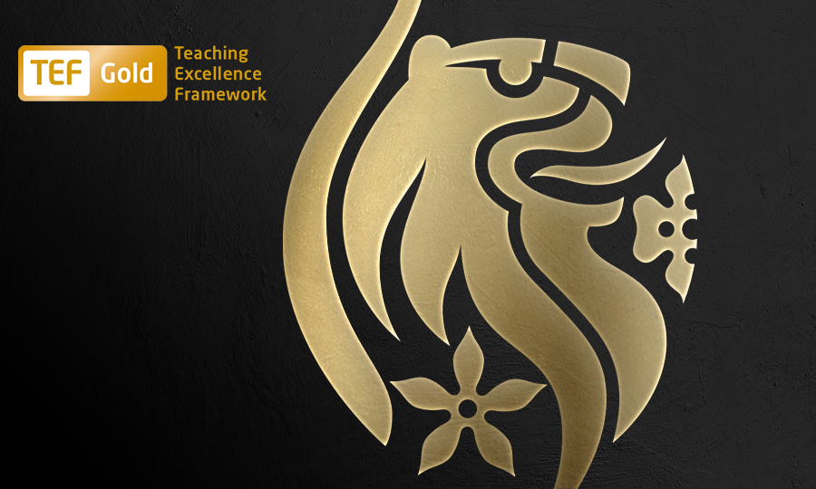 Teaching Excellence Framework banner