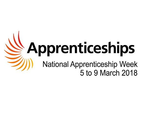 Higher and Degree Apprenticeships: Information and Networking Event for Employers