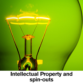 Intellectual Property and spin outs