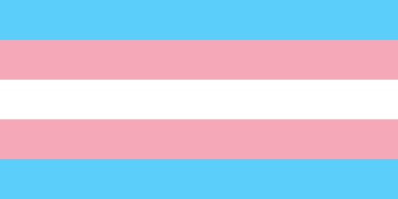 Transgender_Pride_flag-main