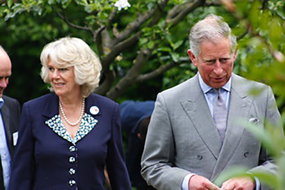 charles and camilla main