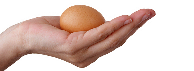 EggDonationBanner