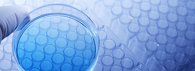 research-support-bnr