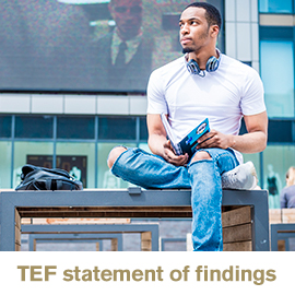 TEF statement of findings