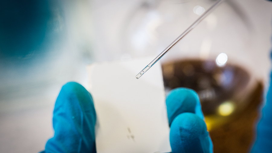 Advice on Biotechnology career options in India and abroad