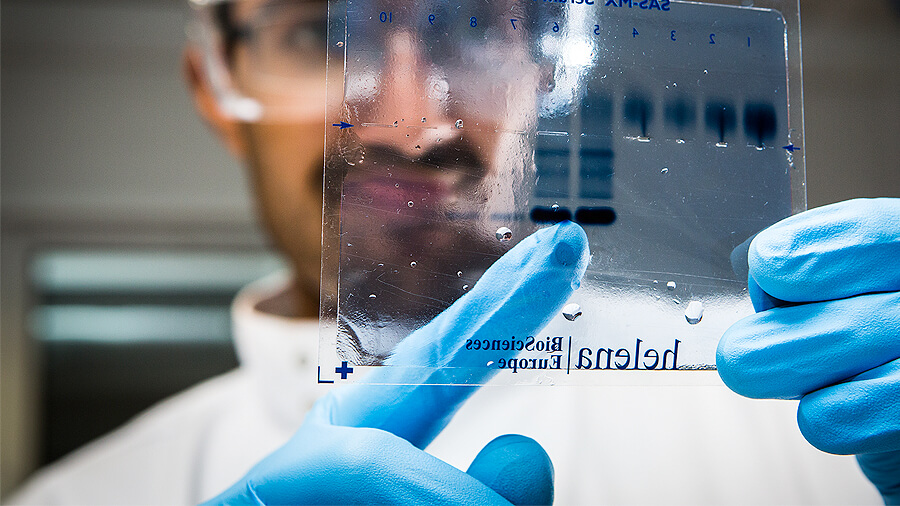 Biomedical Science how studying many subjects in college benifit
